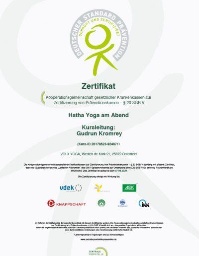 Zertifizierung-des-Kurses-Hatha-Yoga-am-Abend