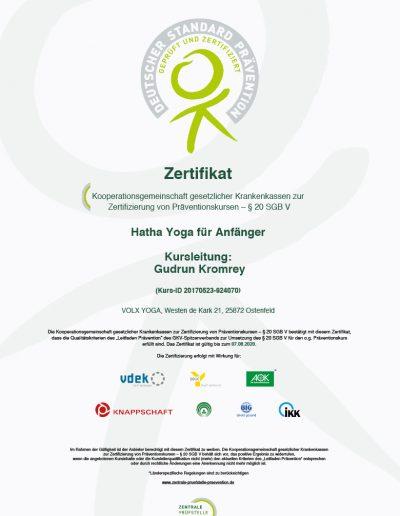 Zertifizierung-des-Kurses-Hatha-Yoga-fuer-Anfaenger